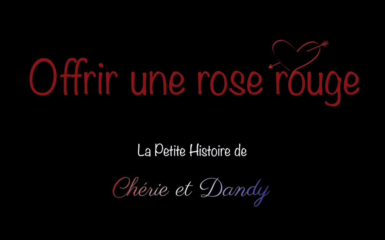 la petite histoire de Cherie et Dandy offrir une rose rouge